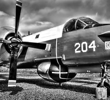 Vintage Fighter Aircraft Lockheed Neptune (Mono) by StephenRphoto
