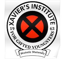 Xavier's Institute for Gifted Youngsters Poster