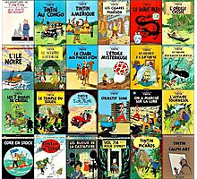 Tintin Book Covers Photographic Print