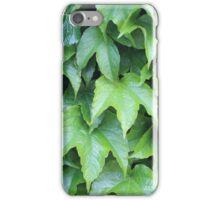 Boston Ivy iPhone Case/Skin