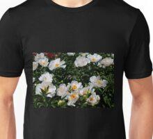 An Unrivaled Glimpse Unisex T-Shirt