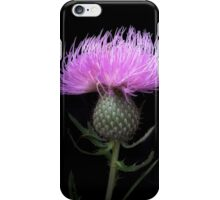 Thistle in the Grasslands iPhone Case/Skin