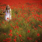 Collecting Poppies by Theresa Elvin