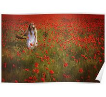 Collecting Poppies Poster
