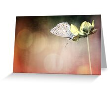 There is so much more to see if you just look up... Greeting Card