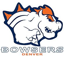 The Denver Bowsers! Photographic Print