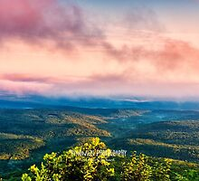 Looking West by Herb Spickard