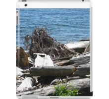 Driftwood at Lincoln Park iPad Case/Skin
