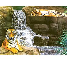 Tigerfall Photographic Print