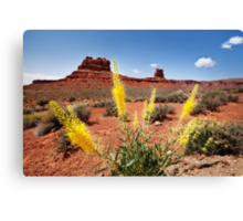 Prince blooms in a Valley of the Gods Canvas Print