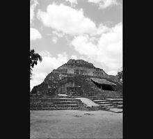 Mayan Ruins Unisex T-Shirt