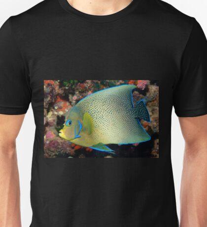 Semicircle Angelfish, Ningaloo Reef Unisex T-Shirt