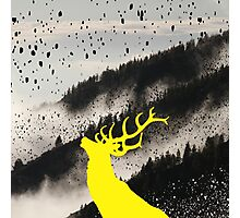 Oh Deer Yellow Photographic Print