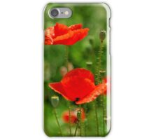 Red poppies in summer iPhone Case/Skin