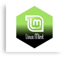 linux mint hexagonal hexagon design Canvas Print