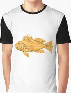 Black Sea Bass Drawing Graphic T-Shirt
