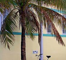 SOBE Beach Cruiser by JLBrokaw