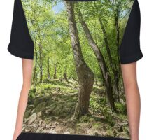 Beech forest and hiking trail Chiffon Top