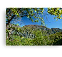 Limestone mountains Canvas Print