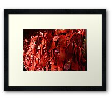 Love China Framed Print