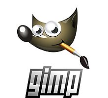 gimp design software image edition Photographic Print
