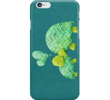 Turtle Hugs iPhone Case/Skin