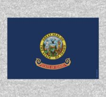 Idaho State Flag by USAswagg