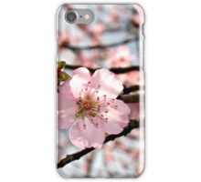 Blooming Blossom iPhone Case/Skin