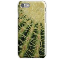 A Green Prickly Cactus iPhone Case/Skin