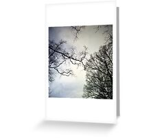 Ghostly Trees Greeting Card