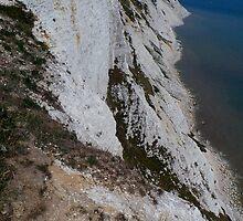 Beachy Head White Cliffs by Vanessa  Warren