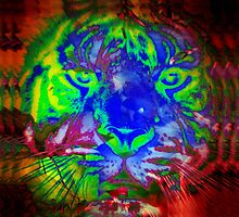 Tiger_8518 by AnkhaDesh
