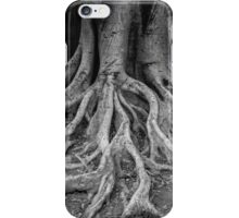 root tree iPhone Case/Skin