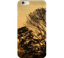 sunset with silhouetted tree iPhone Case/Skin