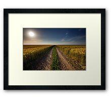 Rural road through wheat field Framed Print