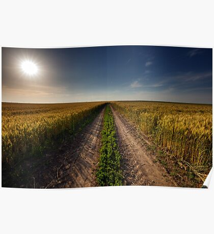 Rural road through wheat field Poster
