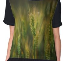 Wheat field at sunset, sun in the frame Chiffon Top
