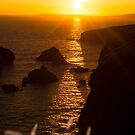 sunset over the coastal rocks with wild highl by morrbyte
