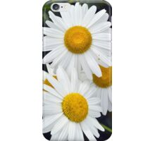 daisies abstract iPhone Case/Skin