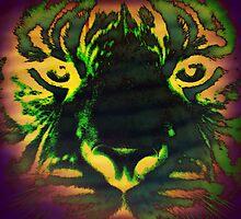 Tiger_8534 by AnkhaDesh