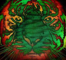 Tiger_8535 by AnkhaDesh