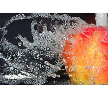 Water off an apple's back Photographic Print