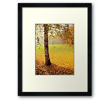 The end of the golden autumn Framed Print