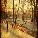Winter on the Olza River by Redrose10