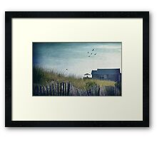Strange Birds Framed Print