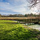 River Bure at Coltishall, Norfolk , UK by Mark Snelling