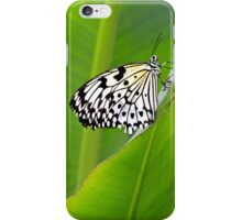 Turning over a new leaf iPhone Case/Skin