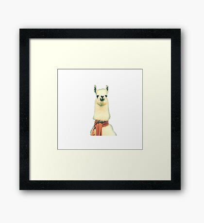 Creepy Alpaca  Framed Print