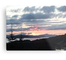 Last rays over Tingle Creek Metal Print