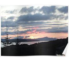 Last rays over Tingle Creek Poster